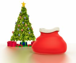 santa bag_and_tree_11_30_08_pc_pro_me